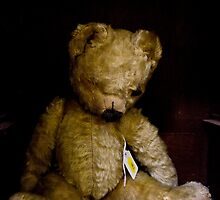 Ted 2 by Shelly Still