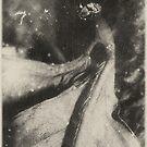 mantodea by Jill Auville