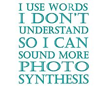 I USE WORDS I DON'T UNDERSTAND BLACK/MINT Photographic Print