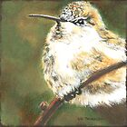 Anna's Hummingbird by Liz Thoresen