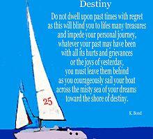 Destiny by Artisimo