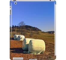 Hay bales and panorama | landscape photography iPad Case/Skin