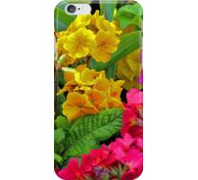 Primulas iPhone Case/Skin