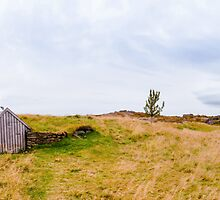 Old shack in Iceland by Stanciuc
