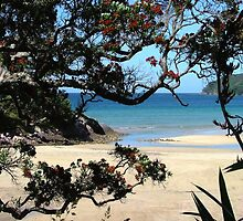 Pa Beach - a peek of paradise........! by Roy  Massicks