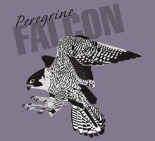 Peregrine Falcon by msb1016