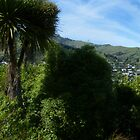 Akaroa panorama by PhotosByG