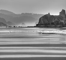 Low Tide at Cannon Beach by thatche2