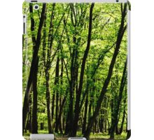 Forest background iPad Case/Skin