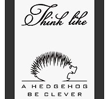 Think like a Hedgehog by vivendulies