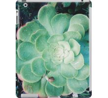 Succulents and snails iPad Case/Skin