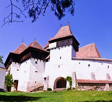 The Fortified Church from Viscri village, Transylvania, Romania by Stanciuc
