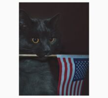 Smokey and The Flag  by Corinne Noon