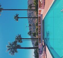 Palm springs. by Santamariaa