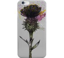 Thistle (Grey Background) iPhone Case/Skin