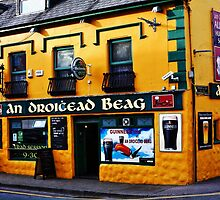Dingle County Kerry Ireland by aidan  moran
