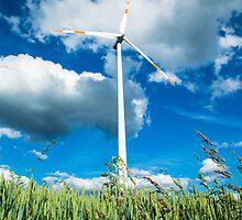 Windmill Again  by Crystal  Ash