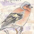 Chaffinch by Troglodyte