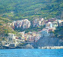Cinque Terre  by J Harlow