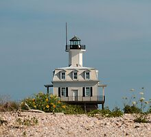 Bug Light by Bethany Helzer