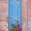 The Blue Door by Alan Findlater