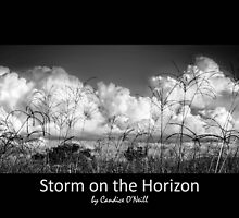 Storm on the Horizon by Candice84