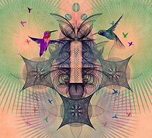 The Hummingbird Dimension by spires