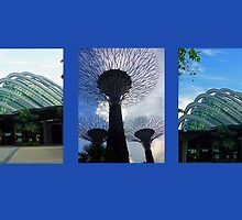 Gardens By The Bay II by Tleighsworld