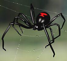 Black Widow Spider by Paul Fleet