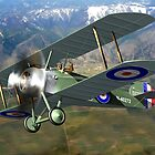 Sopwith Camel  by Paul Fleet