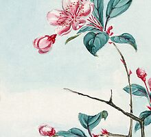 Japanese Plum - Flowers, Leaves - Pink Green by sitnica