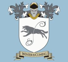 House Stark - Game of Thrones by Sangui
