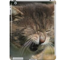 Grumpy cat iPad Case/Skin