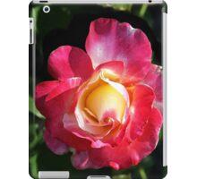 Mellow Passion 2 iPad Case/Skin