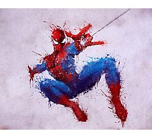 Web Head Photographic Print