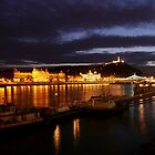The Danube by WillBov