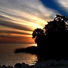 Sunset at Bayport Park by designingjudy
