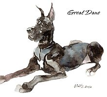 Great Dane by groovyart