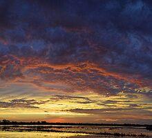 Stormy Rise by LynyrdSky