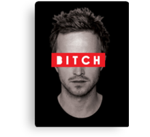 Jesse Pinkman - Bitch. Canvas Print