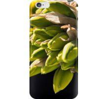 Daffodil Buds iPhone Case/Skin