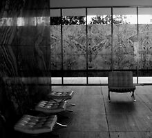 Barcelona Pavilion, Mies van der Rohe by Tom Hewitt
