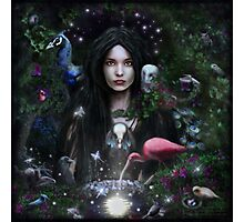 The Feather Mistress Photographic Print
