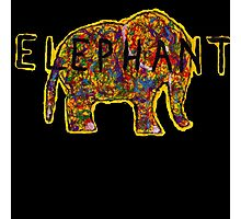 Elephant. In a variety of colours. Photographic Print