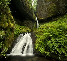 Waterfall of the Pacific Northwest by SillyBoyArtstry