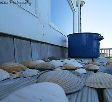 Shell Shocked by THeshlerPhoto
