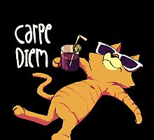 Carpe Diem like a Cat by sebastianst
