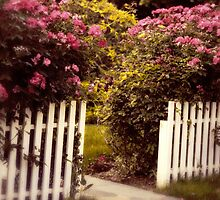 Picket Fence Florals by Jessica Jenney