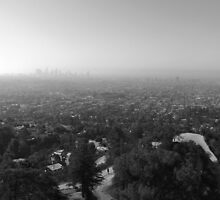 Los Angeles Overlook by Andrey Molina