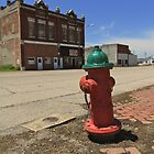 Fire Hydrant by Andrew Felton